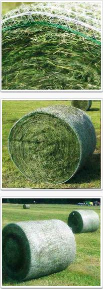 Bale netwrap